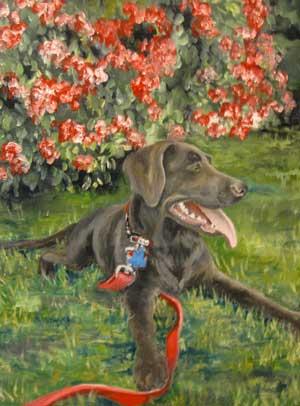 Faith's Dog