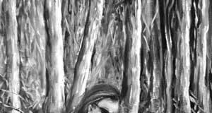 Peregrine Hiking